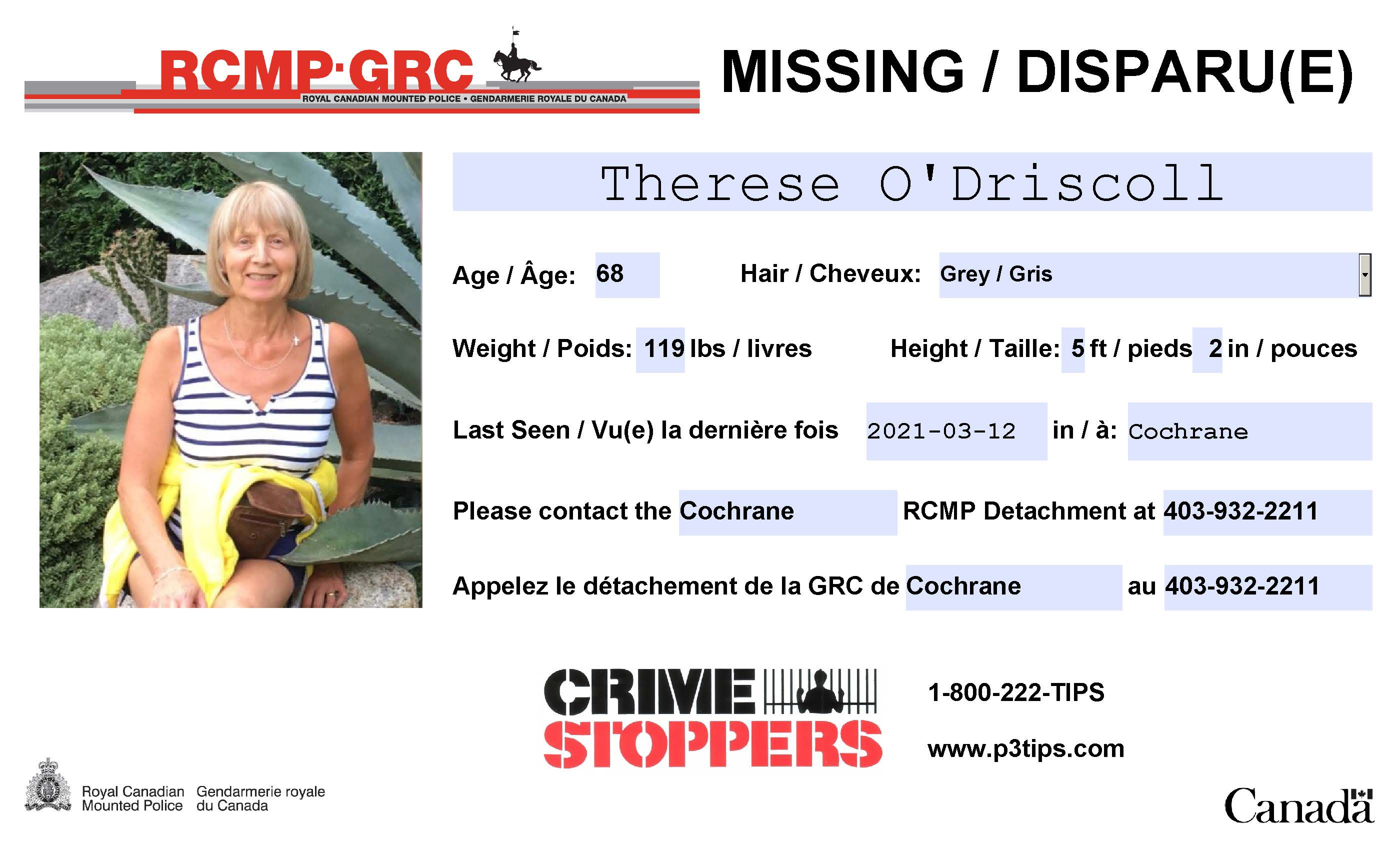 T O'Driscoll Missing Person Poster (1).jpg
