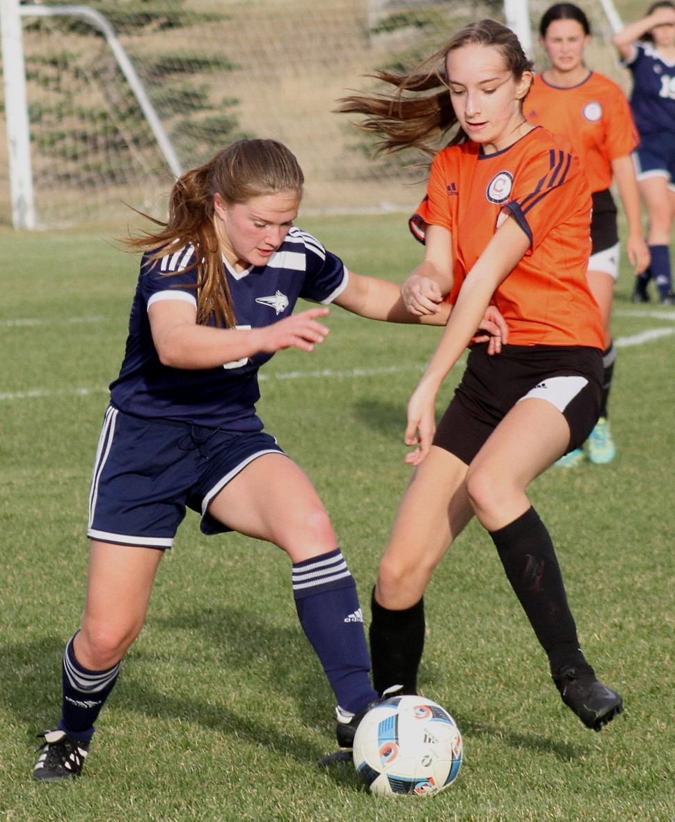 bobcats soccer 6.jpg
